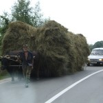 Scenes from the roads of Romania