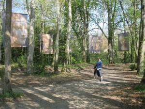 In Leonardo's park