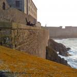 Iva enjoying St. Malo